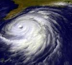 hurricane-or-virus-you-decide