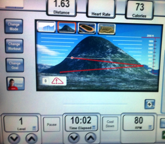 LifeFitness-Mountain-Mode-Visualization