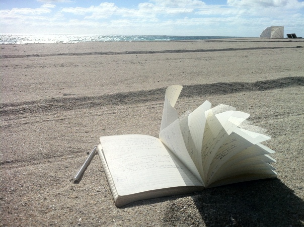 Oceanfront INSDSG - moleskine flapping in the ocean breeze