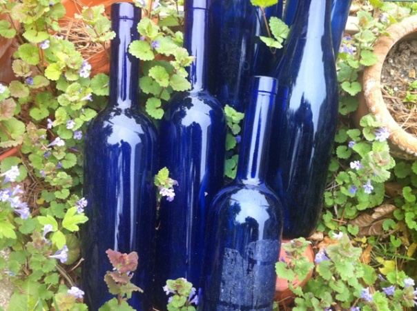 garden blue bottles 2