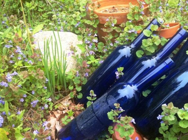 garden blue bottles 3