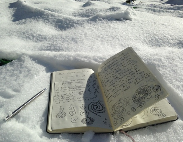 Moleskine in Snow