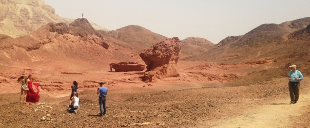 Timna Voyeurs and Poseurs